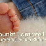 Lammfell im Kinderwagen